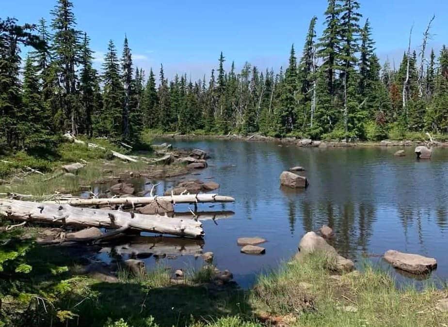 PCT: last day in Oregon